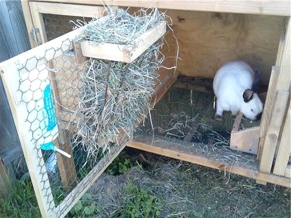 Кормушки для сена кроликам фото