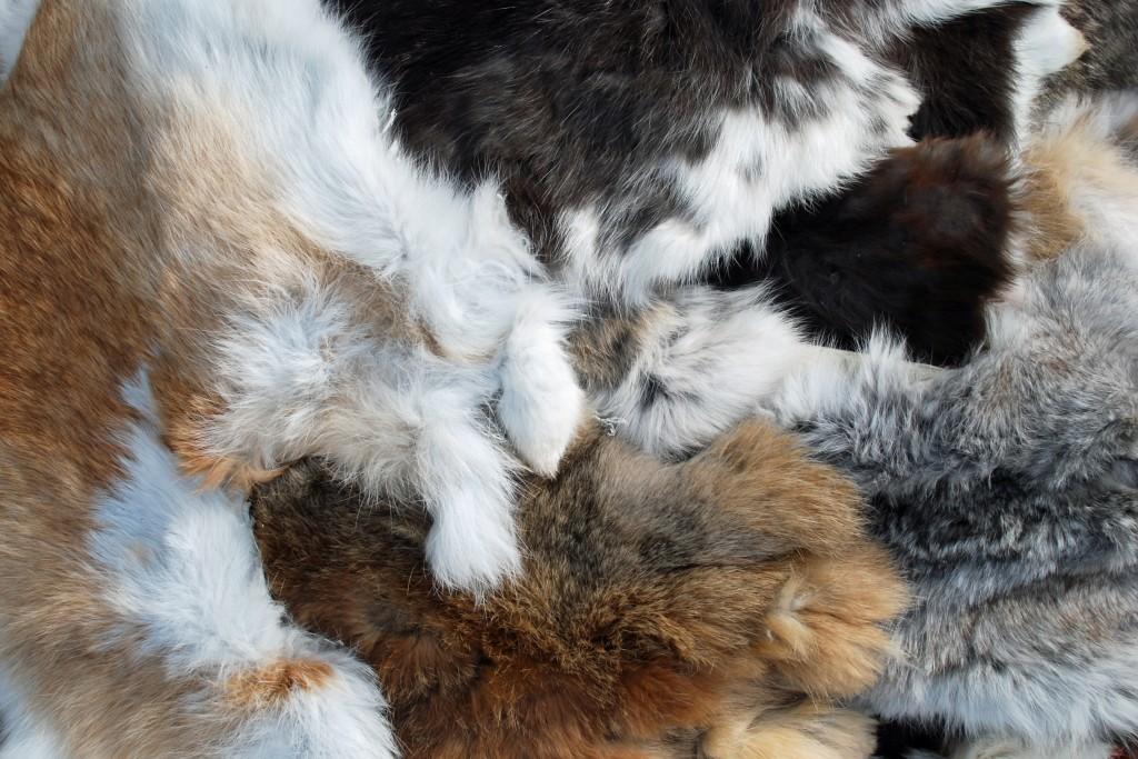 4078 Вичинки шкурок кроликів
