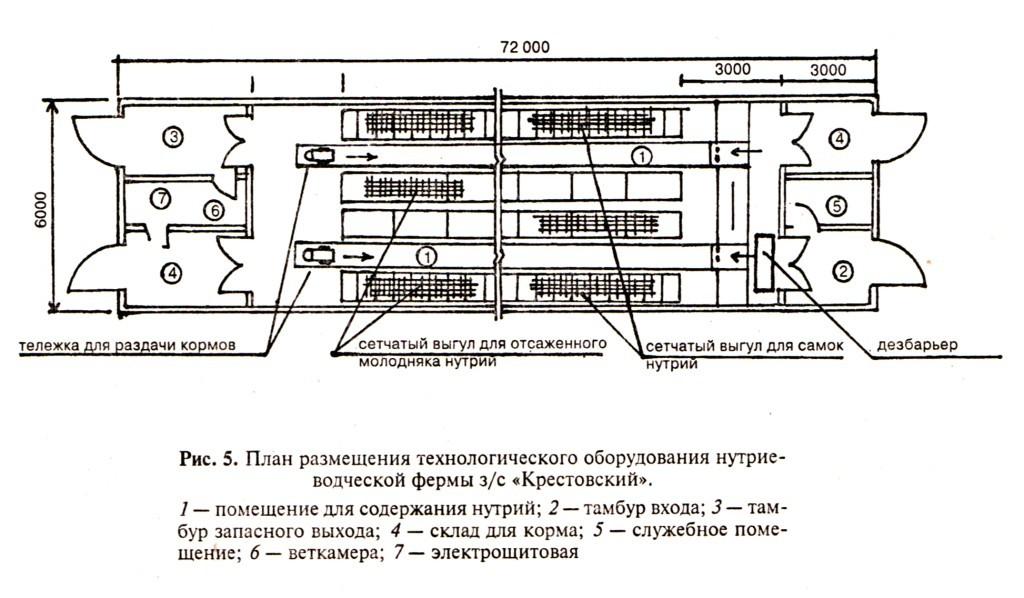 Мікроклімат в приміщеннях для нутрій