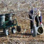 8695 Чим і скільки разів годувати сад