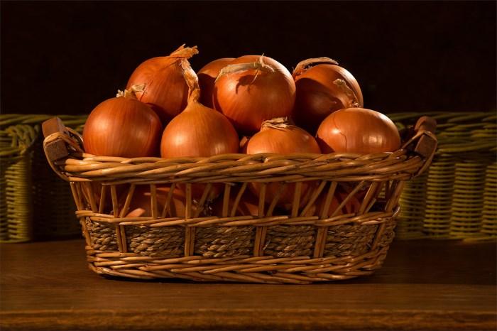 Комплексний захист овочів від хвороб і шкідників