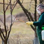 8827 Весняна обробка плодового саду від шкідників