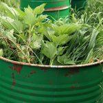 9134 Добриво з трави як зробити зелену підгодівлю