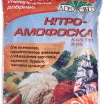 9197 Добриво Нітроамофоска: застосування, склад, норми внесення