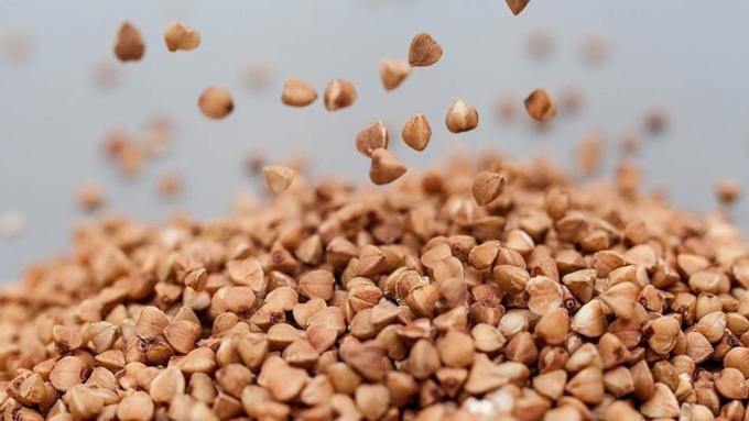 Лушпиння з насіння, рису, гречки як добриво як використовувати