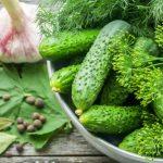 10686 Кращі рецепти малосольних огірків