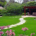 10509 Факти про садових метелики