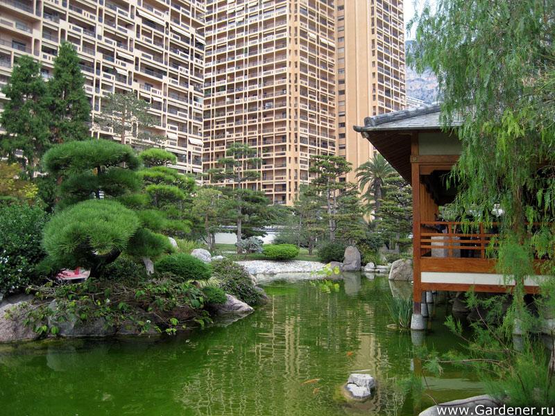 10510 Японський сад Монако