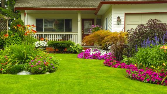 10802 Садовый конструктор: собери свой цветник перед домом