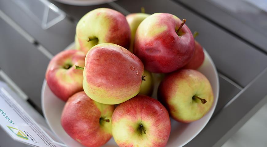 10922 10 самых вкусных сортов яблок на дегустационном марафоне