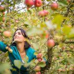 10999 Как сохранить урожай яблок до Нового года?
