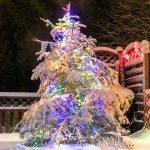 11159 Как украсить елку в саду к Новому году: что можно, а что не стоит использовать в качестве уличных украшений?