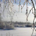 11209 Тотальный ледниковый период: какой будет погода на Новый год