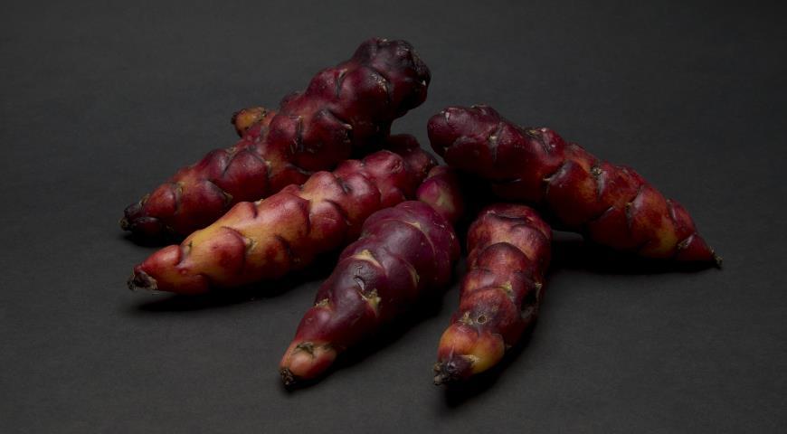 11273 Кислица клубненосная - необычный овощ индейцев: как вырастить диковинный клубни в средней полосе?