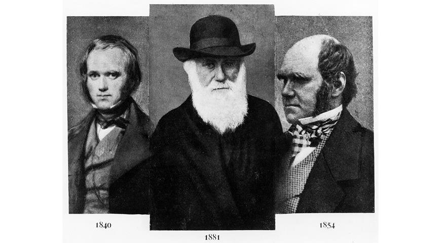 11340 12 февраля день рождения Чарльза Дарвина: 10 фактов о его жизненном пути