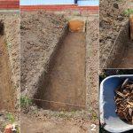 11498 Ремонтантная малина: как получить богатый урожай ягод, личный опыт