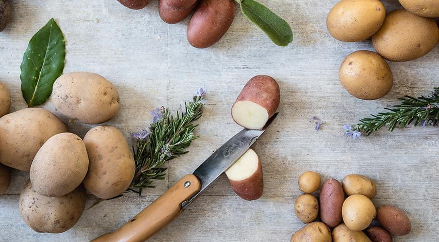 11648 Почему мелкая картошка самая ценная?