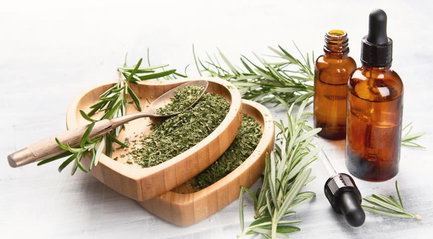 11735 Ароматный розмарин: полезные свойства и применение розмарина в медицине, кулинарии и косметологии + рецепты