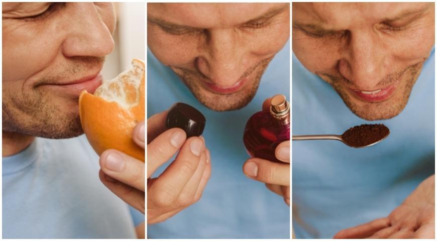 11732 Как снова научиться различать запахи и почему это очень важно