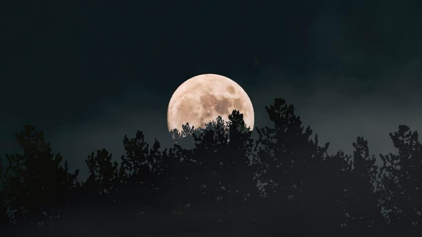 11712 Почему октябрьское полнолуние называют Луной Охотника и каким оно будет